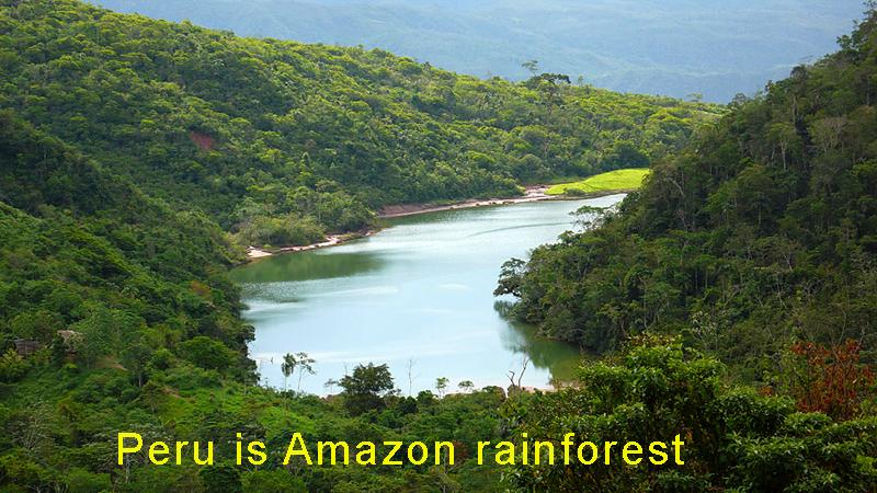 PeruisAmazonrainforest