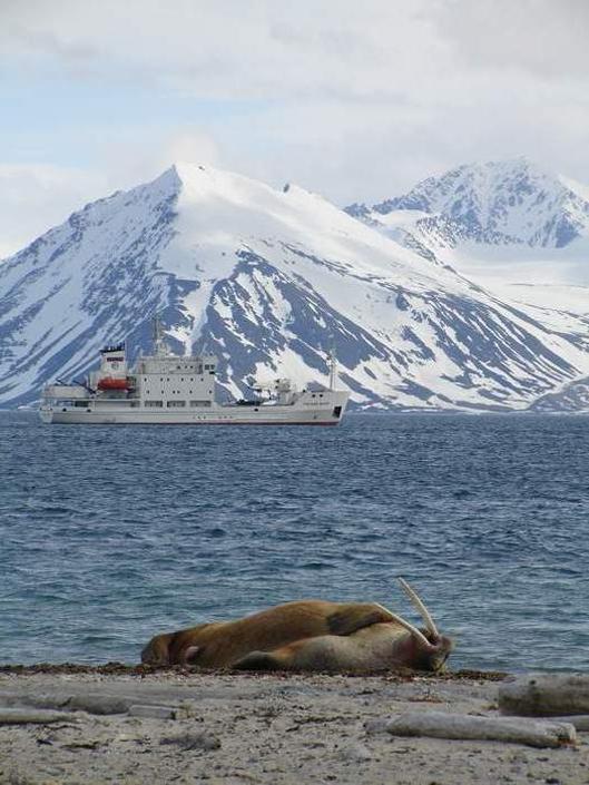 Svalbard3