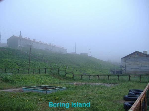 BeringIsland2